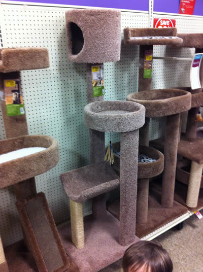 Learn how to build a diy cat tower cat condo cat tree dadand diy cat tower plans solutioingenieria Gallery