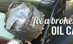 oilcap_feat