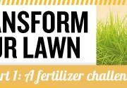 transform-lawn-1_feat