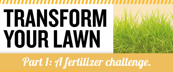 Lawn Fertilizer Challenge