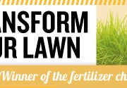 transform-lawn-2_feat