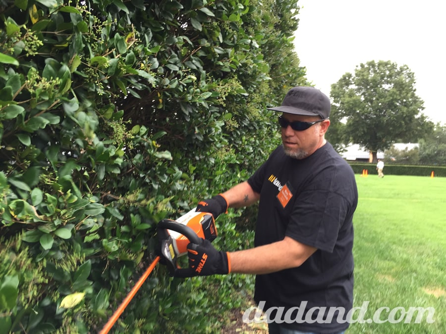 We felt sorry for these hedges. They must not cut them all year long and then one day…